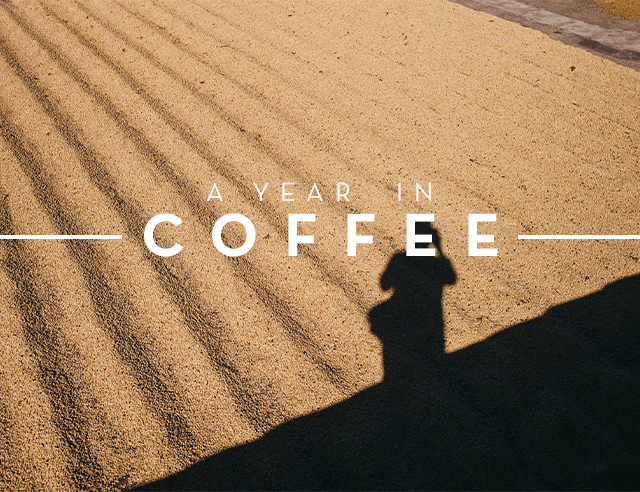 main- A Year In Coffee