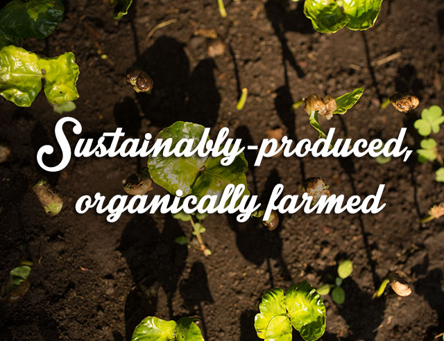 Sustainably Produced, Organically Farmed