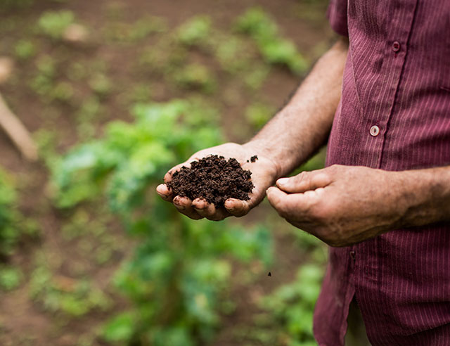 Man holding dark soil in his hand