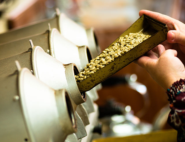 Coffee beans being put into a roaster