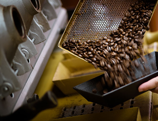Roasted coffee beans coming out of roaster
