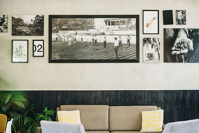 Wall with couch and old photographs