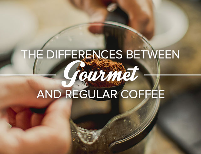 The Differences Between Gourmet and Regular Coffee